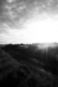 Clearview الرقمية شرائط اختبار الإباضة