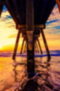 قائمة مسقط رأس نجوم البورنو الحيوي