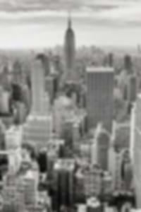 بحيرة الأسماك خمر الثلج الثلج rondevu