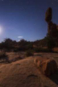 إسيلا بالاسيوس تفوت صور بيكيني