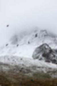 مرافقة الجنس في جزر البهاما