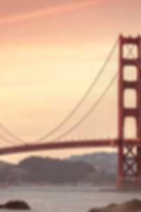 صور مجانية من الهرات