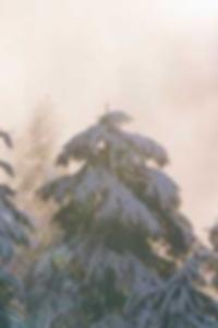 أفضل صور الشاطئ عارية